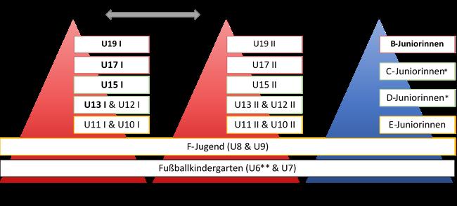 Ausbildungsstruktur